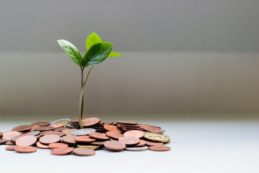 Small plant growing out of coins